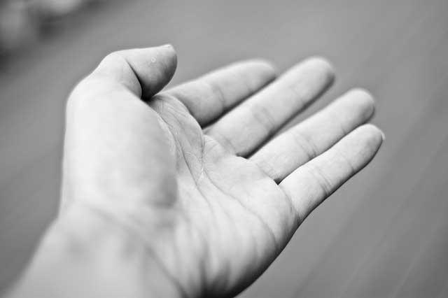 Estudios sobre la Terapia de movimiento inducido por restricción