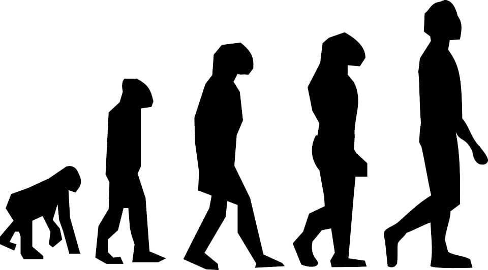 Definición de Terapia Ocupacional y Filosofía: ¿necesitamos una perspectiva evolutiva?