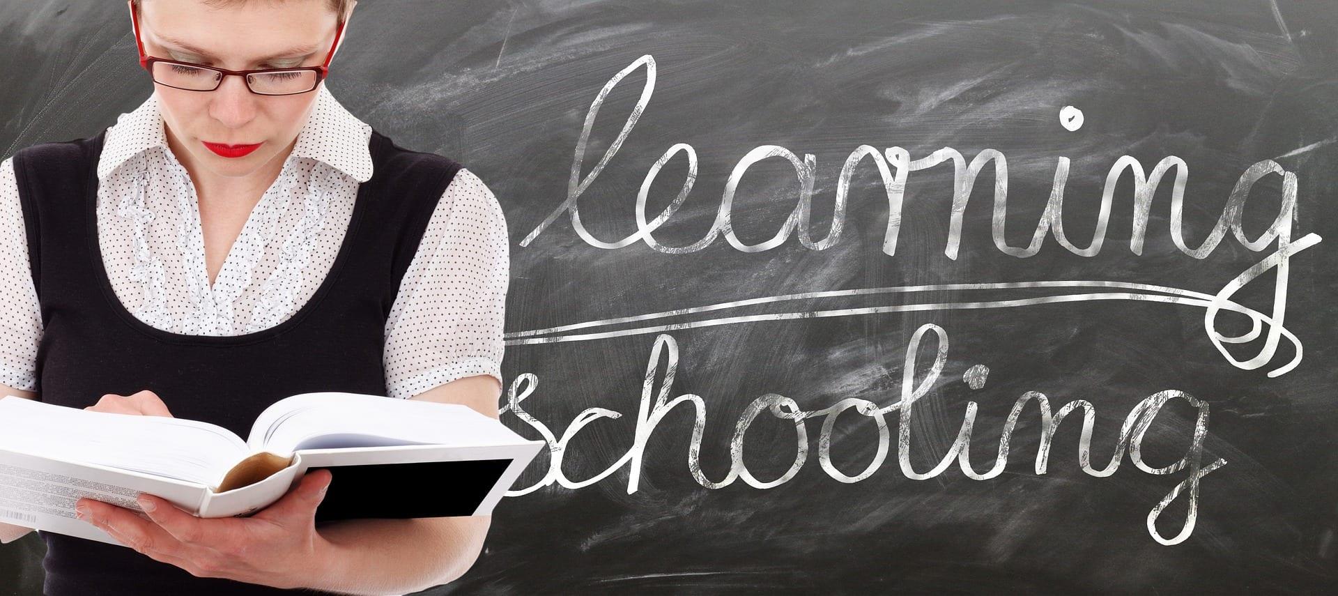 Revisión de la Evaluación Erhardt del Estilo de Enseñanza-Aprendizaje (ELSA): Resultados de un Estudio Piloto Cualitativo