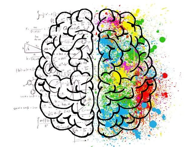 Relación entre hemisferios y su papel en la rehabilitación neurológica